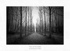 where once Poe walked (Teo Kefalopoulos - Art Photography) Tags: macedoniagreece makedonia timeless macedonian macédoine mazedonien μακεδονια