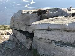 Marmots (B Robinson60) Tags: mountain glacialerratic groundsquirrel marmots