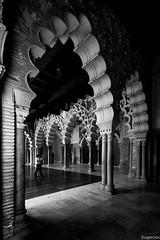 Polilóbulos. (Eugercios) Tags: zaragoza aragon aragão aragón aljaferia palacio palace islamico islam islamic islão arquitectura architecture arte art arc arco polilobulados polilobulo españa espanha europa europe spain bw blanco black branco negro preto white