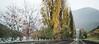 _DSC9057 (Mario C Bucci) Tags: amarelo trento verona italia parma presunto crudo romeu e julieta lago de garda auto estrada montanhas tuneis tunel arena lojas beneton cachorro chuva fina vinho queijo salame