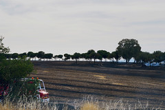 Fire in stubble. (Miguel Angel Prieto Ciudad) Tags: sky landscape travel tree road españa spain race countryside agriculture track vehicle farm outdoors stubble daylight environment paisaje fuego incendio cropland harvester bomberos mostoles no person transportation system