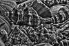 More Shells (joegeraci364) Tags: animal beach bivalve clam coast color conch design helix image memories mollusk natural nature photograph print round sand scallop season shape shell shore snail summer tropical tropics vacation