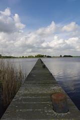 Friesland[260]