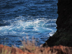 View from the trail (thomasgorman1) Tags: view rock cliff pacific hawaii lanai canon trail outdoors island