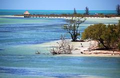 Isla Pasión (damianbendersky) Tags: islapasión isla holbox quintanaroo mexico shadesofblue blue azul coast peaceful peace quiet paz tranquilidad