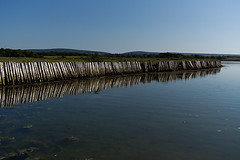 Newtown (Sarah Marston) Tags: newtown isleofwight reflection sony ilce6300 june 2017