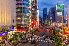 Hustle & Bustle @ Shinjuku, Tokyo