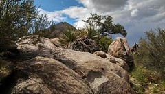 Aguirre Springs, Organ Mountains, NM (lotos_leo) Tags: aguirresprings агирреспрингс organmountains nm newmexico outdoor landscape desert mountains desertpeaks ньюмексико органмаунтинс nature поамерике crossamerica2016