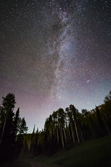 20170702_F0001: A doubly galactic view (wfxue) Tags: astronomy night sky milkyway andromeda galaxy m31 messier31 emission nebula stars dark bright trees birch forest woods path slope trail longexposure