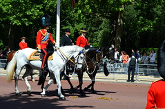 Heir Appearant (dhcomet) Tags: themall london colonels review practice rehearsal british army household division soldier military ceremonial hrh royal royalty prince william dukeofcambridge colonel