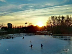 BACK TO THE ROOTS #icehockey #Eishockey #roots #Wurzel #lake #sunset #Sonnenuntergang #Schweinfurt #Photographie #photography (benicturesblackwhite) Tags: sonnenuntergang roots wurzel icehockey photography eishockey sunset lake schweinfurt photographie