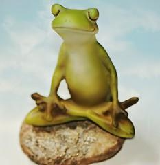 """""""Ohmmm......ribbit ribbit!"""" (nushuz) Tags: macromondays relaxation frog yogapose hmm terrariumceramicfrog 112by2inches stone cute mrfroggy"""