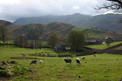 Photo of Martindale
