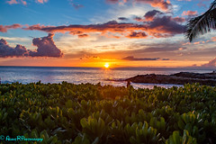 Another Aulani Sunset pic (robertperrin25) Tags: aulani sunset dvc hawaii pacificocean