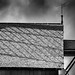 Moulin à vent de Woluwe-Saint-Lambert