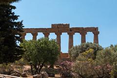 SicilyS (83 of 135) (margaretelman) Tags: agrigento italy ruins sicily templeofhera valleyoftemples sicilia it