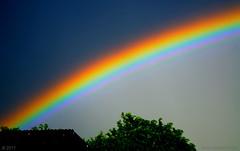 Two Skies and a Rainbow (ironmember) Tags: rainbow arcobaleno cielo dualskies sky chiaroscuro scieluminose arco arcoluminoso dopoiltemporale temporale settecolori scomposizionedellaluce lucenelcielo allaperto manolibera nikond90 d90 tamron tamron16300 paesaggio landscape doppiocielo