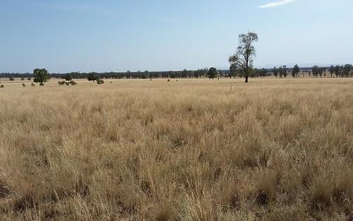 Part Weenoona, Gilgandra NSW