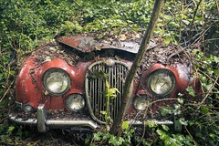 'Out from the wild'... (Taken-By-Me) Tags: abandoned adventure creepy green red car auto automobile daimler jaguar derelict decay dark d750 explore exploring empty engine lamps lights forgotten forest gone left lost nikon neglect ruin rusty rust urbex urban ue