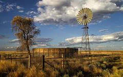 Artesian Well (Bass Photography) Tags: artesianwell waterhole windmill boulia queensland outback outbackaustralia australia australiansuburbs australianoutback australianlandscape