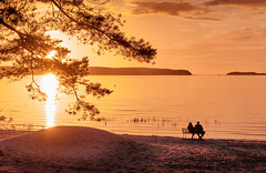 Sunset Romance (tiitkbi) Tags: lovers love sunset estonia