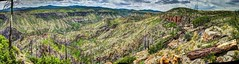 Cochiti Canyon Closer (JoelDeluxe) Tags: jemez mountains cochiti canyon newmexico panorama landscape burned area trees skies rocks green riparian nm hdr joeldeluxe