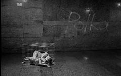 Tunnel Public Live Exhibition (Vasilij Betin) Tags: withoutphotoshop women 35mm espio ishootfilm iso400 people portrait photography portraitisreligion performance art grain genre grunge girl ghost film filmnotdead filmisnotdead street streetphoto streetphotography simple asia analog asiaflaneur china bw blackwhite nomodel nude