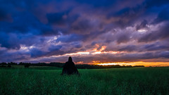 Fantasy (SylvainB_) Tags: people posing pose photography cosplay forest nature colors personnes paysage landscape médiéval cape cloak crépuscule twilight fantasy cloud nuage