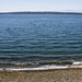 """Camano Island State Park • <a style=""""font-size:0.8em;"""" href=""""http://www.flickr.com/photos/25269451@N07/35678663845/"""" target=""""_blank"""">View on Flickr</a>"""