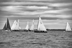 Seven Setting Sail (cuppyuppycake) Tags: seven sail boats lough derg ireland