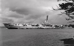 HMAS Sydney (eastwoodgeoff) Tags: ran royal australian navy hmas sydney terrible majestic bronzewing