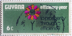 Guyana Efficiency Year (1)