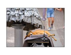 Hundeleben (Fujigraf) Tags: hund dog pause break artist stadt insbruck dackel hut