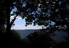2017-05-28 (Giåm) Tags: sønderborg vemmingbund østersøen östersjön baltic baltique ostsee gendarmstien sundeved sønderjylland danmark danemark denmark dänemark giåm guillaumebavière
