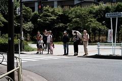 DSCF6192 (keita matsubara) Tags: shinjyuku gyohen shinjyukugyoen tokyo japan garden 新宿 新宿御苑 東京 庭 庭園 日本