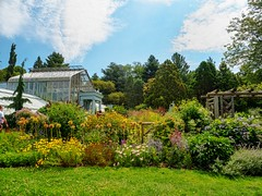The Lush Life (Mildred Alpern) Tags: outdoors garden plants flowers sky clouds trees buildings grass greenhouse