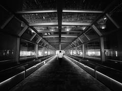 Walk on the Center (marco ferrarin) Tags: atrium walkway bridge shinjuku tokyo nsbuilding urban city architecture perspective maninthemiddle light night blackandwhite