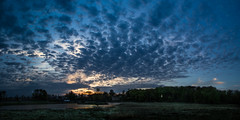 Spottet sunset (RuneKC) Tags: sunset dyrehaven deerpark clouds landscape lake sky nature forest
