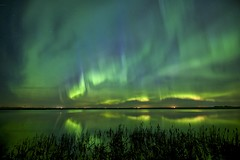 April 21 aurora at Beiseker (John Andersen (JPAndersen images)) Tags: alberta april aurora beiseker canon6d curtains night pond reflections