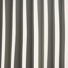 Zebra liner (yanomano_) Tags: zebra paper shadow bw ber lineup yes sicridic yanomano lines minimal