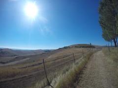 GOPR6341 (Matteo Bimonte) Tags: viafrancigena francigena toscana tuscany trekking