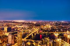 Manhatten Night view (sammanwong) Tags: sonya6300 sony sonyalpha zeiss1670mmf4 zeiss1670 a6300 newyork newyorkcity ny manhatten nightphotography nightscene nightshot nightlights longexposure citylights