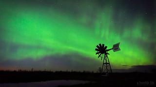 Prairie Aurora