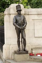 WW2 memorial, Victoria, London (D.Ski) Tags: hydeparkcorner greenpark wellingtonarch ww2 memorial warmemorial london uk england