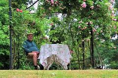 Cool like a king (frenziM) Tags: portrait snapshot streetshot fun funny people man seat garden canong7xmarkii