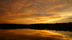 20170702-203948 (gregnboutz) Tags: cloud beautifulclouds cloudiness clouds cloudy cloudylake colorfulclouds lakesunset lakesunsets orangesunset orangesunsets sunset sunsets colorfulsunsets