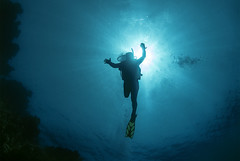 19 07a (KnyazevDA) Tags: diver disability disabled diving undersea padi paraplegia paraplegic amputee egypt handicapped wheelchair aowd sea travel scuba underwater redsea