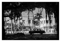 MIRAMAR  (  La Habana - Cuba  ) (RAMUBA) Tags: la habana cuba miramar blanco y negro black white