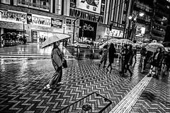 Staring at Me (Mario Rasso) Tags: mariorasso nikon japan japon tokyo tokio street urban umbrella rain raining woman d810