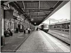 Sitting in a railway station (daverigleyphotos) Tags: nottingham railway station bw fuji x 30 people waiting travel trains